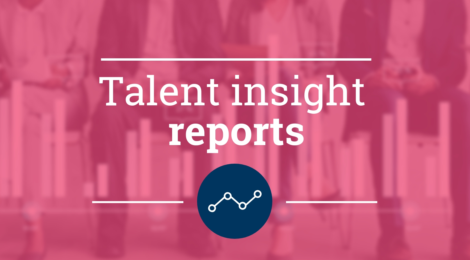 Talent insight reports